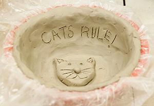 empty-bowls_cat-bowl